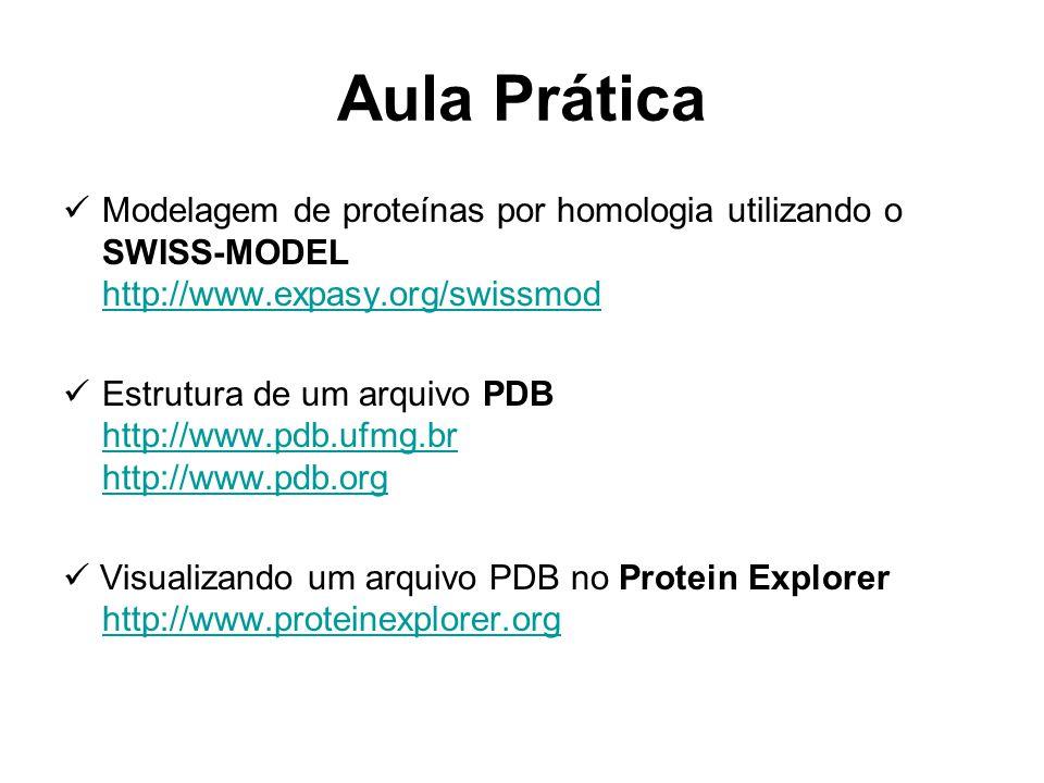 Aula Prática Modelagem de proteínas por homologia utilizando o SWISS-MODEL http://www.expasy.org/swissmod http://www.expasy.org/swissmod Estrutura de um arquivo PDB http://www.pdb.ufmg.br http://www.pdb.org http://www.pdb.ufmg.br http://www.pdb.org Visualizando um arquivo PDB no Protein Explorer http://www.proteinexplorer.org http://www.proteinexplorer.org