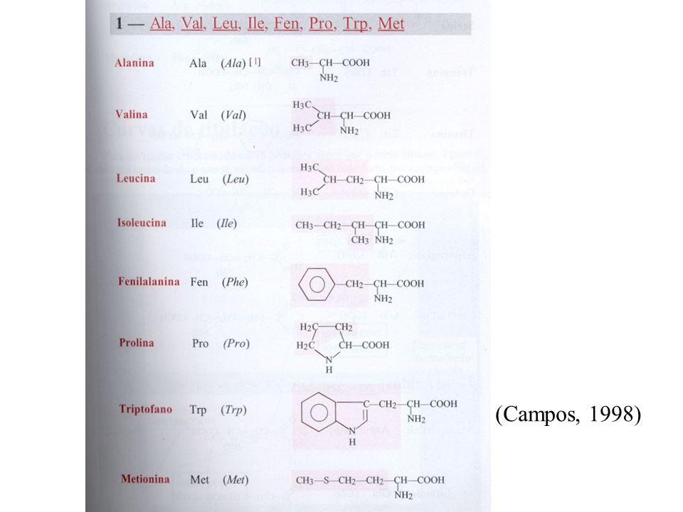 As células vivas dos organismos heterotróficos e na ausência de luz os autotróficos, obtêm a energia de que imediatamente necessitam a partir da oxidação dos poliósidos de reserva a CO2 e água Este conjunto de processos e os de síntese das macromoléculas só é possível devido à intervenção dos catalizadores bioquímicos EnzimasProteínas (globulares)