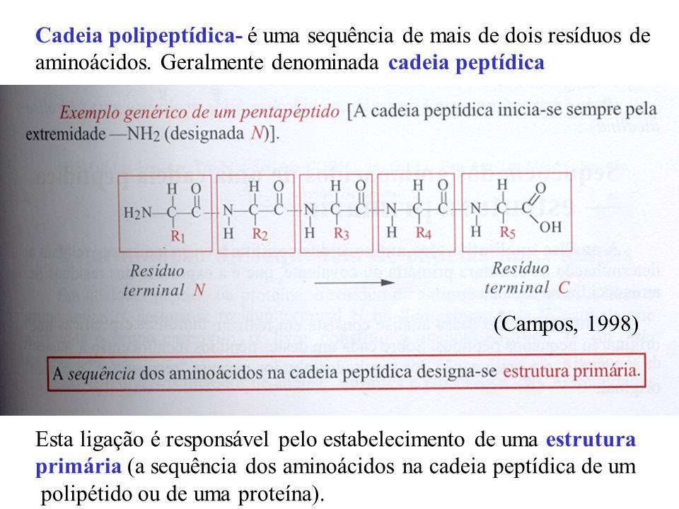 - Cromoproteínas não porfirínicas - pigmentos respiratórios- de alguns invertebrados (contém Fe), crustáceos e moluscos (contém Cu) - pigmentos não respiratórios – flavoproteínas e as metaloproteínas (de Fe e Cu) => permitem o armazenamento e o transporte dos metais nos organismos animais.
