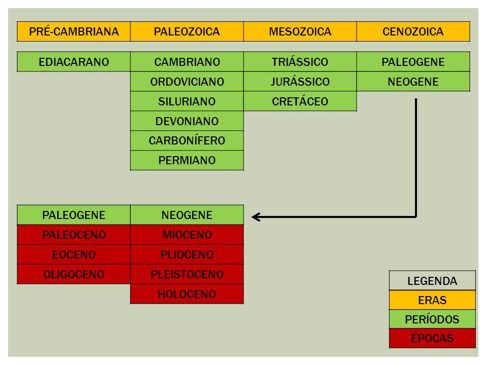 PRÉ-CAMBRIANAPALEOZOICAMESOZOICACENOZOICA EDIACARANOCAMBRIANOTRIÁSSICOPALEOGENE ORDOVICIANO SILURIANO DEVONIANO CARBONÍFERO PERMIANO JURÁSSICO CRETÁCE