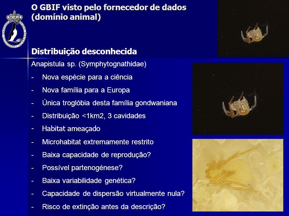 O GBIF visto pelo fornecedor de dados (domínio animal) Distribuição desconhecida Anapistula sp. (Symphytognathidae) -Nova espécie para a ciência -Nova
