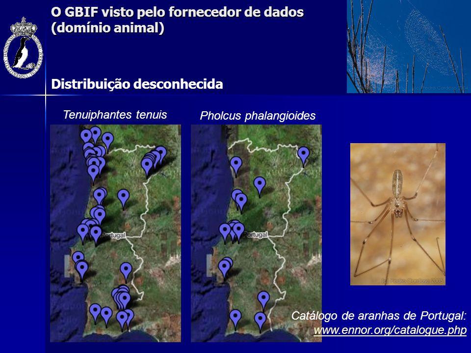 O GBIF visto pelo fornecedor de dados (domínio animal) Iberesia machadoi Zodarion styliferum Distribuição desconhecida Catálogo de aranhas de Portugal: www.ennor.org/catalogue.php