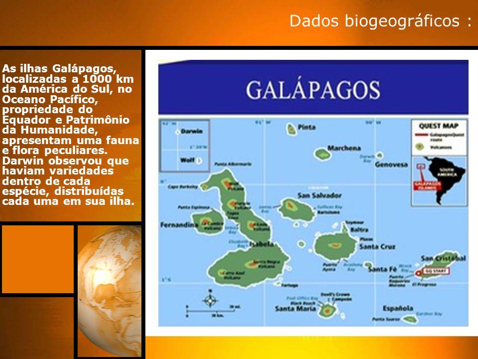 As ilhas Galápagos, localizadas a 1000 km da América do Sul, no Oceano Pacífico, propriedade do Equador e Patrimônio da Humanidade, apresentam uma fau
