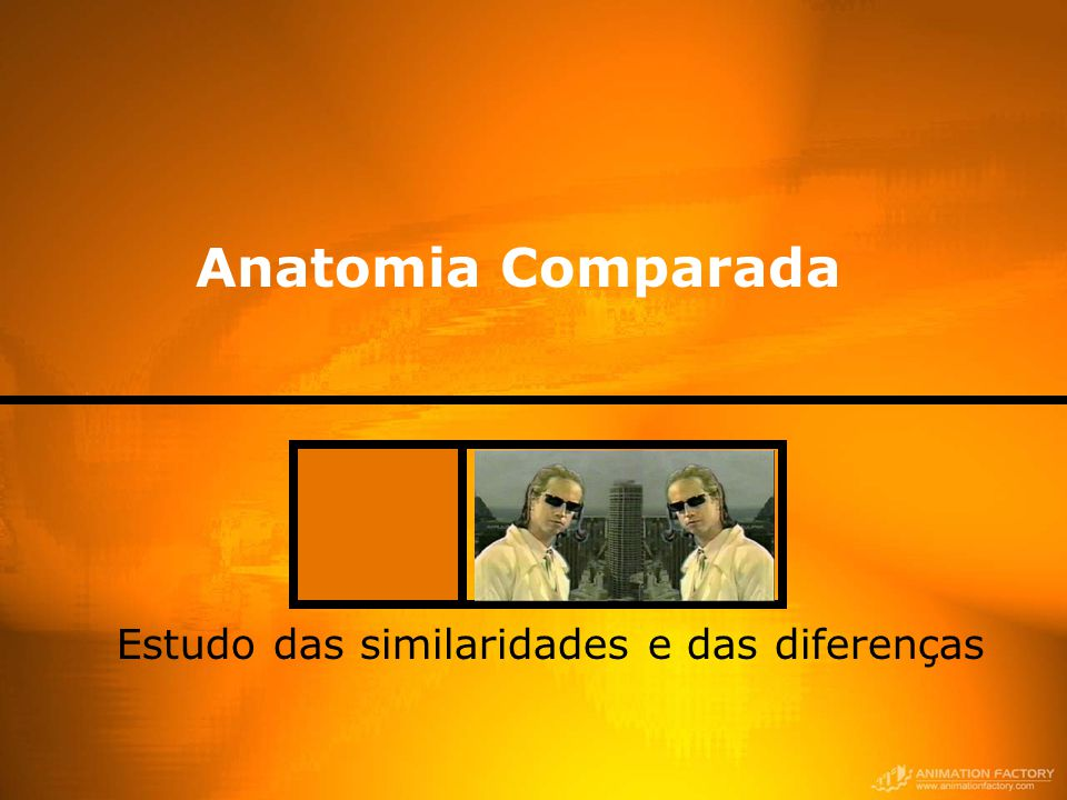 Anatomia Comparada Estudo das similaridades e das diferenças