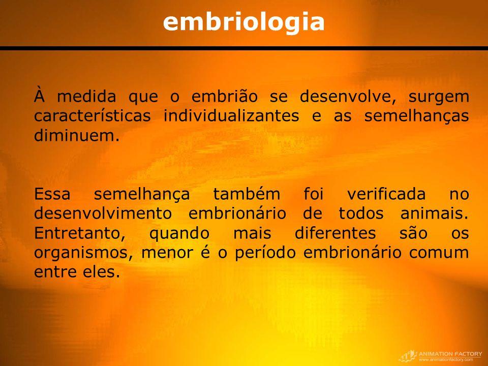 embriologia À medida que o embrião se desenvolve, surgem características individualizantes e as semelhanças diminuem. Essa semelhança também foi verif