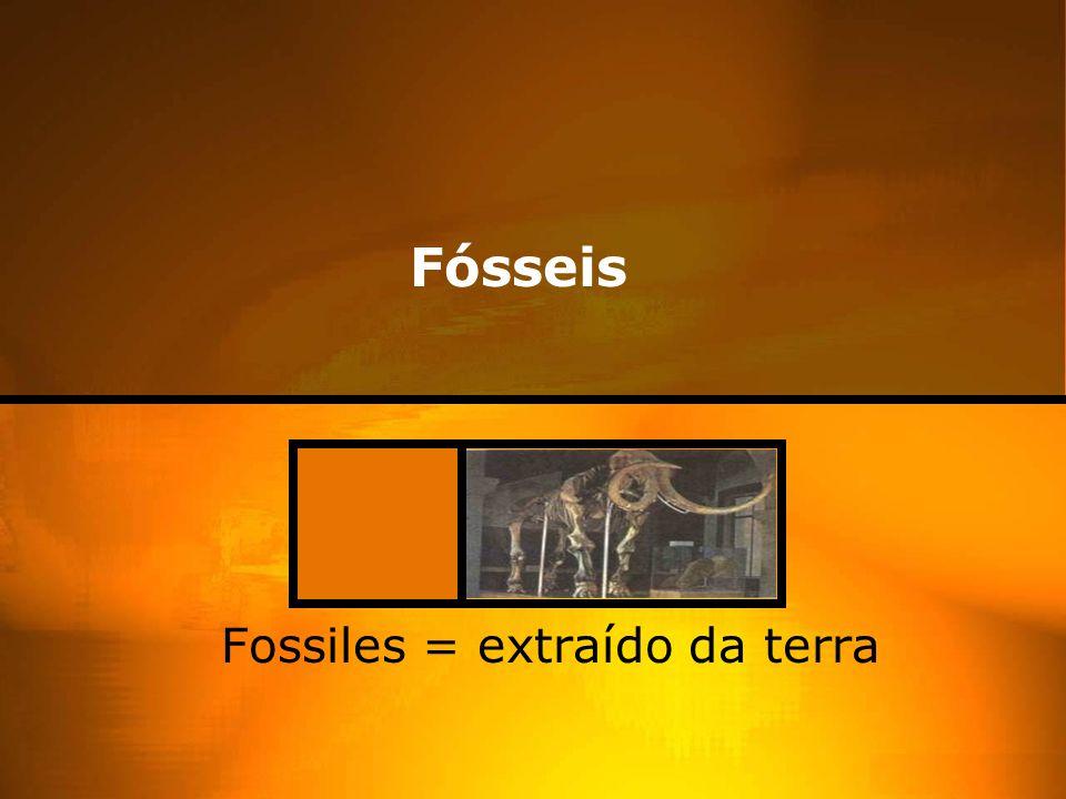 Fósseis Fossiles = extraído da terra