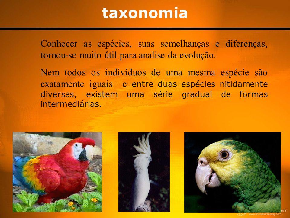 taxonomia Conhecer as espécies, suas semelhanças e diferenças, tornou-se muito útil para analise da evolução. Nem todos os indivíduos de uma mesma esp