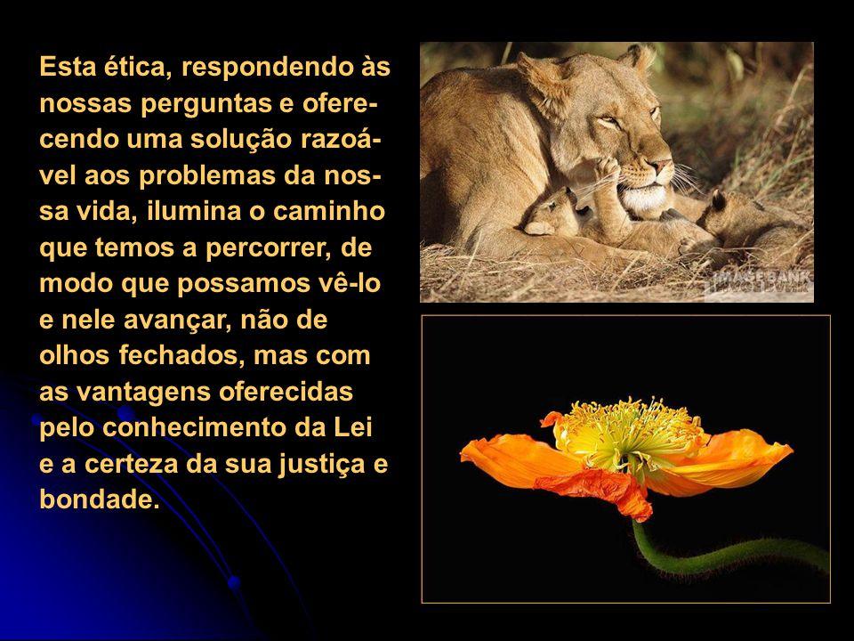 9) Esta ética não somente nos orienta no imenso mundo fenomênico em que vivemos, dirigindo com conhecimento a nos- sa conduta, mas explica o que está