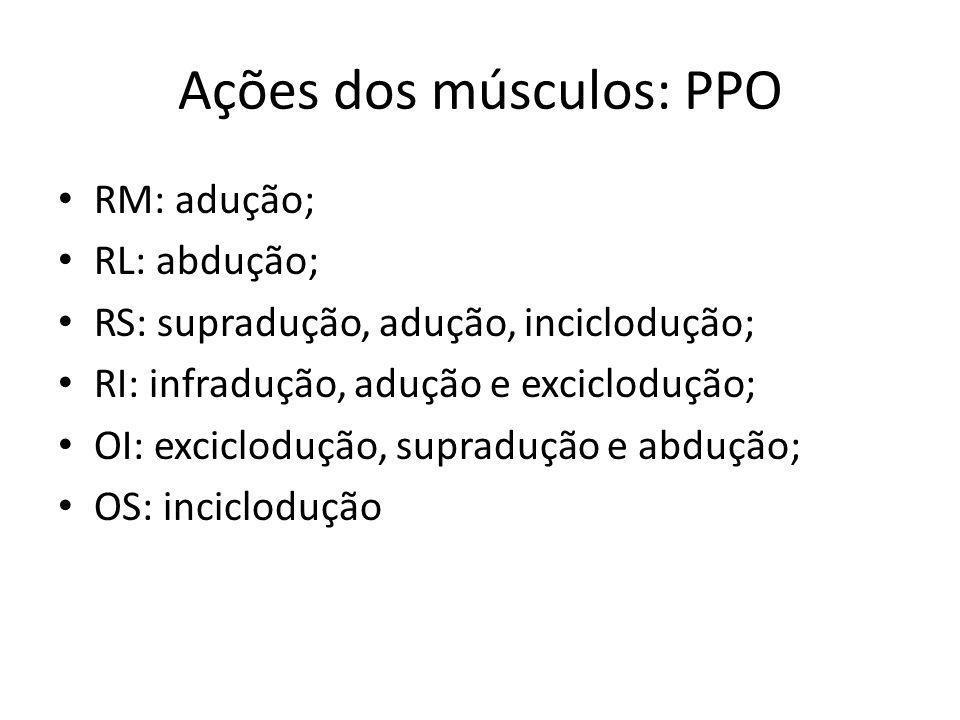 Ações dos músculos: PPO RM: adução; RL: abdução; RS: supradução, adução, inciclodução; RI: infradução, adução e exciclodução; OI: exciclodução, suprad