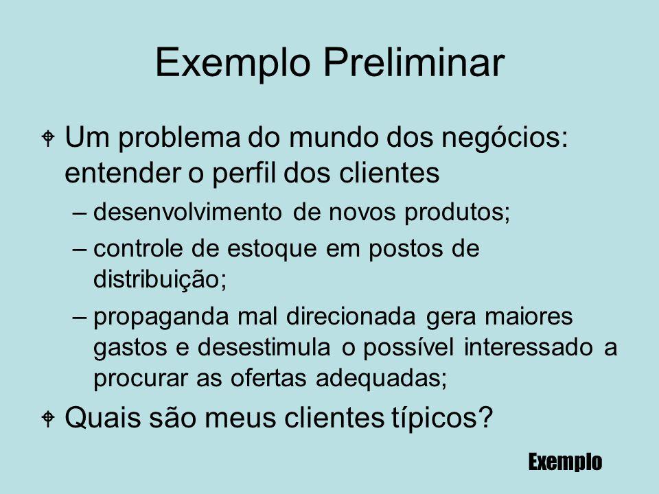 Exemplo Preliminar W Um problema do mundo dos negócios: entender o perfil dos clientes –desenvolvimento de novos produtos; –controle de estoque em pos