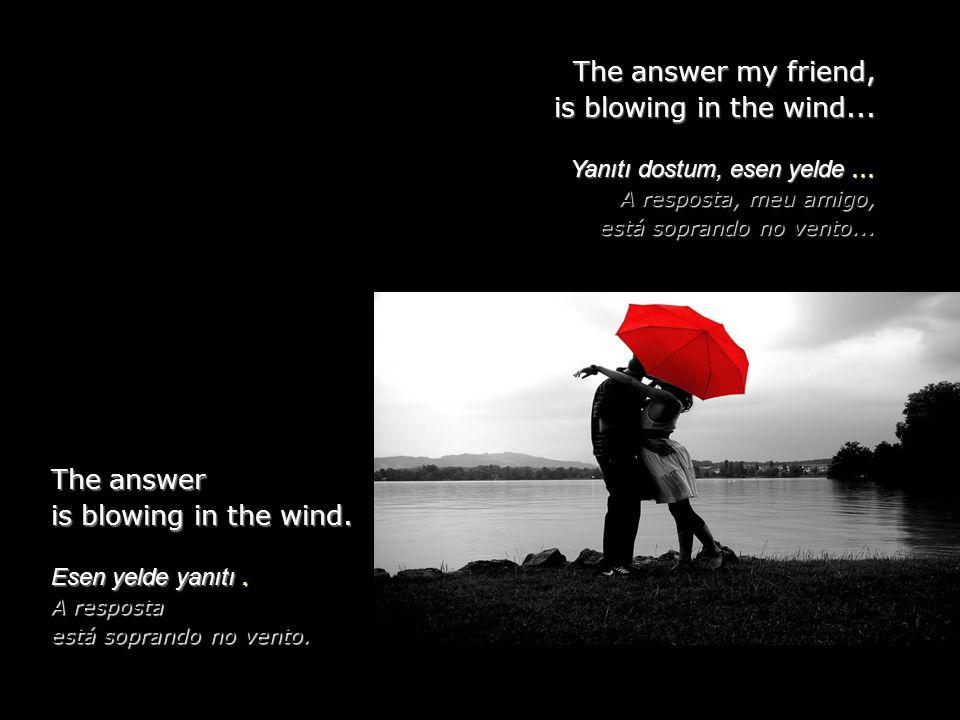 The answer my friend, is blowing in the wind...Yanıtı dostum, esen yelde...
