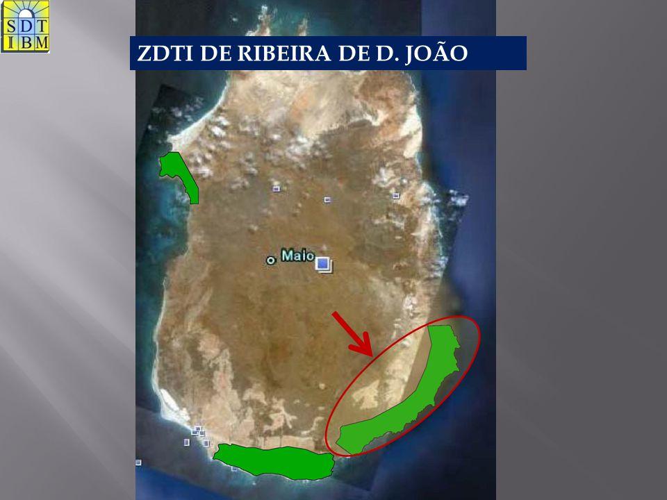 ZDTI DE RIBEIRA DE D. JOÃO