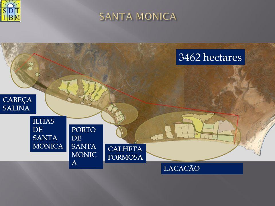CABEÇA SALINA ILHAS DE SANTA MONICA PORTO DE SANTA MONIC A CALHETA FORMOSA LACACÃO 3462 hectares
