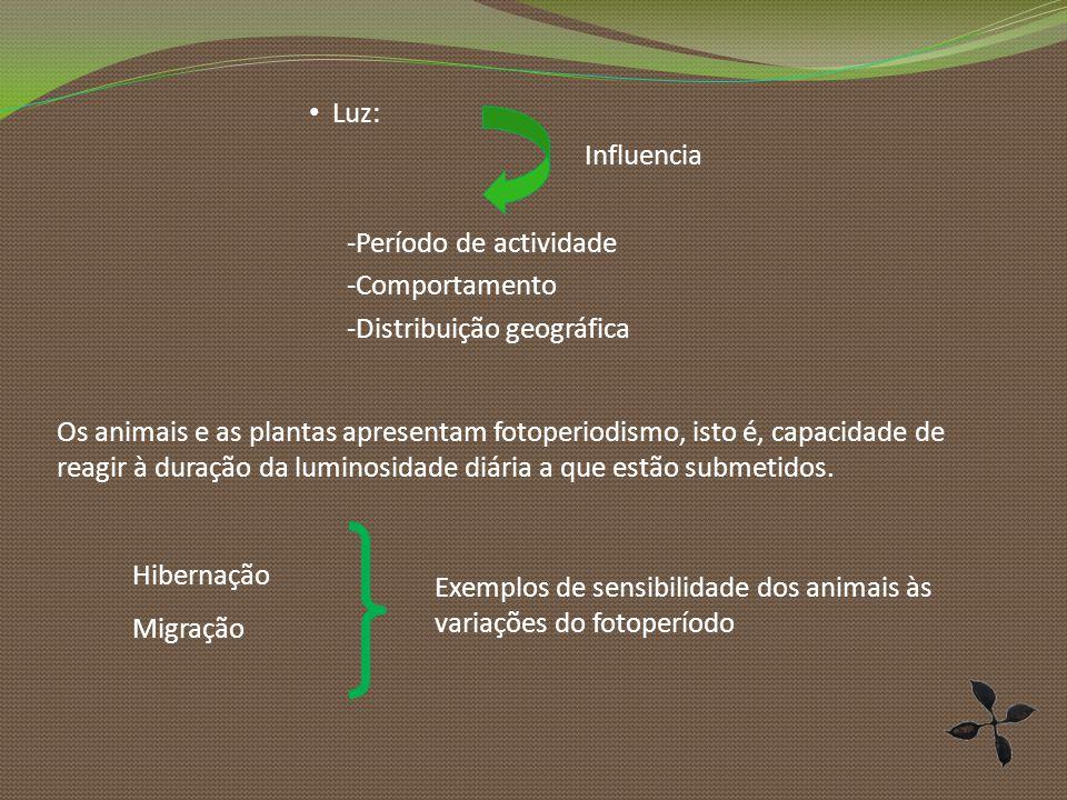 Luz: -Período de actividade -Comportamento -Distribuição geográfica Influencia Os animais e as plantas apresentam fotoperiodismo, isto é, capacidade d