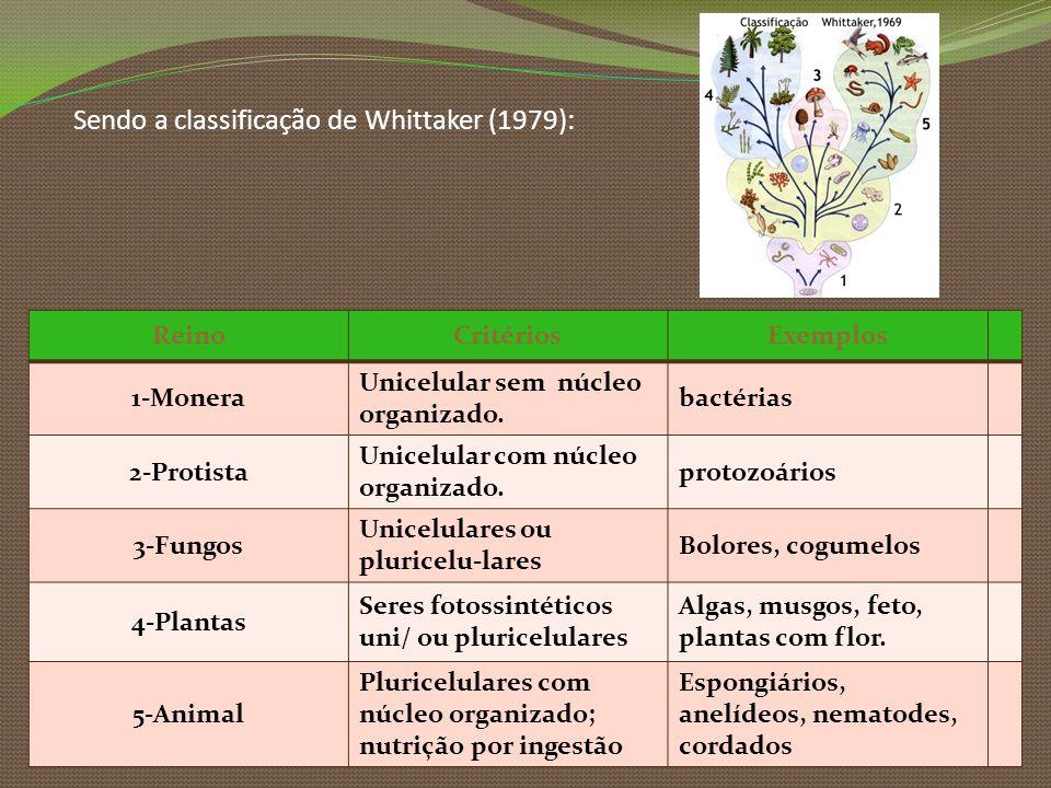 Sendo a classificação de Whittaker (1979): ReinoCritériosExemplos 1-Monera Unicelular sem núcleo organizado. bactérias 2-Protista Unicelular com núcle