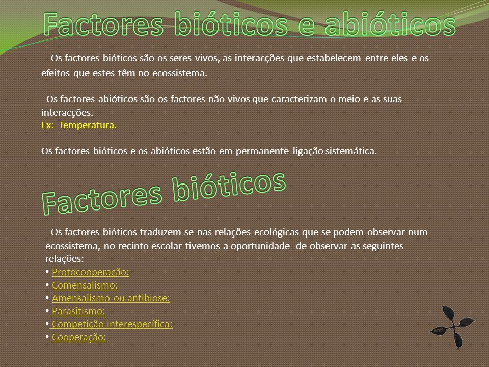 Os factores bióticos são os seres vivos, as interacções que estabelecem entre eles e os efeitos que estes têm no ecossistema.