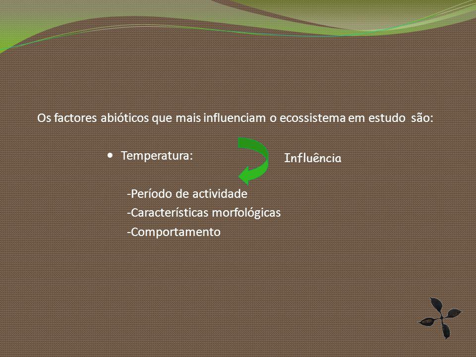Os factores abióticos que mais influenciam o ecossistema em estudo são: Temperatura: -Período de actividade -Características morfológicas -Comportamento Influência