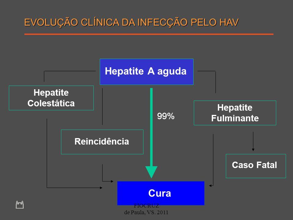 Hepatite A aguda Hepatite Colestática Reincidência Hepatite Fulminante Caso Fatal Cura 99% EVOLUÇÃO CLÍNICA DA INFECÇÃO PELO HAV FIOCRUZ de Paula, VS.
