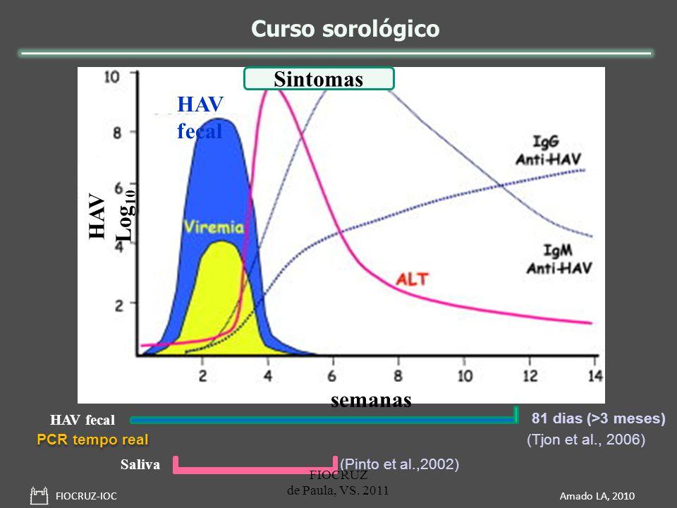 Curso sorológico FIOCRUZ-IOC Amado LA, 2010 semanas HAV Log 10 HAV fecal 81 dias (>3 meses) (Tjon et al., 2006) Sintomas PCR tempo real Saliva (Pinto