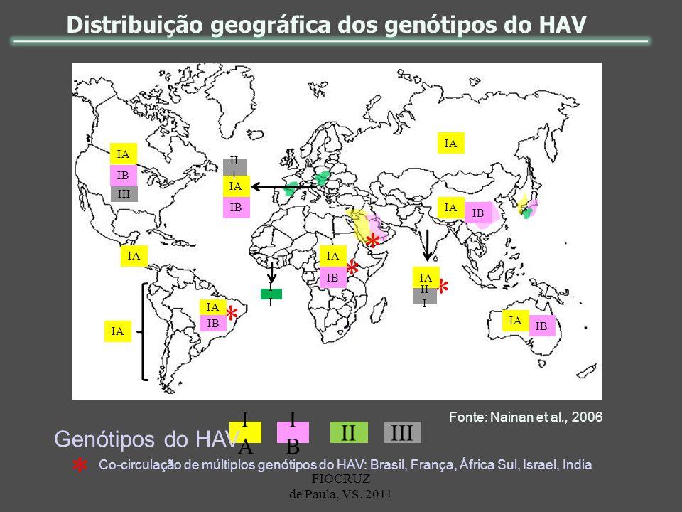 Distribuição geográfica dos genótipos do HAV * * * * IA IB III IA IB IA IB IA II I IB IA IB IA IB II I I IAIA IBIB IIIII Genótipos do HAV Fonte: Naina