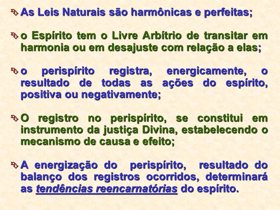  As Leis Naturais são harmônicas e perfeitas;  o Espírito tem o Livre Arbítrio de transitar em harmonia ou em desajuste com relação a elas;  o peri