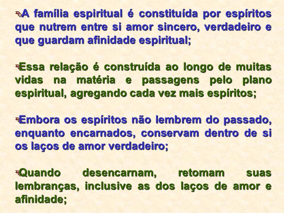  A família espiritual é constituída por espíritos que nutrem entre si amor sincero, verdadeiro e que guardam afinidade espiritual;  Essa relação é c
