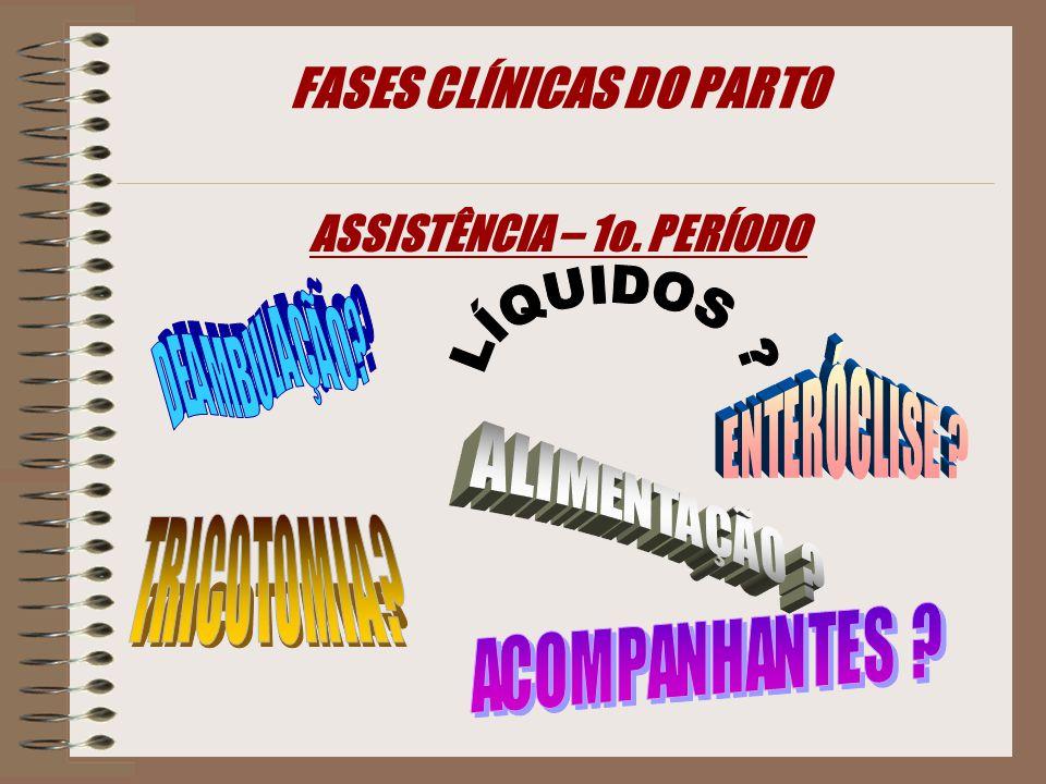 FASES CLÍNICAS DO PARTO ASSISTÊNCIA – 1o. PERÍODO