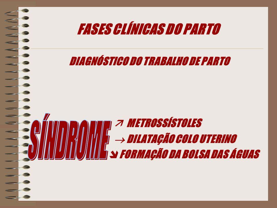 DIAGNÓSTICO DO TRABALHO DE PARTO  METROSSÍSTOLES  DILATAÇÃO COLO UTERINO  FORMAÇÃO DA BOLSA DAS ÁGUAS