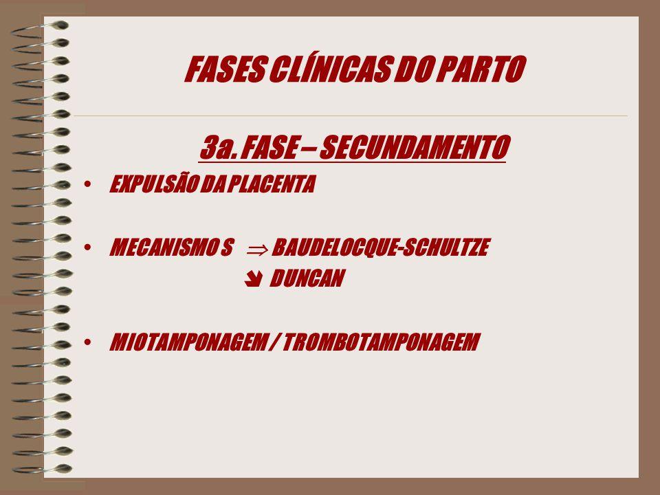 FASES CLÍNICAS DO PARTO 3a. FASE – SECUNDAMENTO EXPULSÃO DA PLACENTA MECANISMO S  BAUDELOCQUE-SCHULTZE  DUNCAN MIOTAMPONAGEM / TROMBOTAMPONAGEM