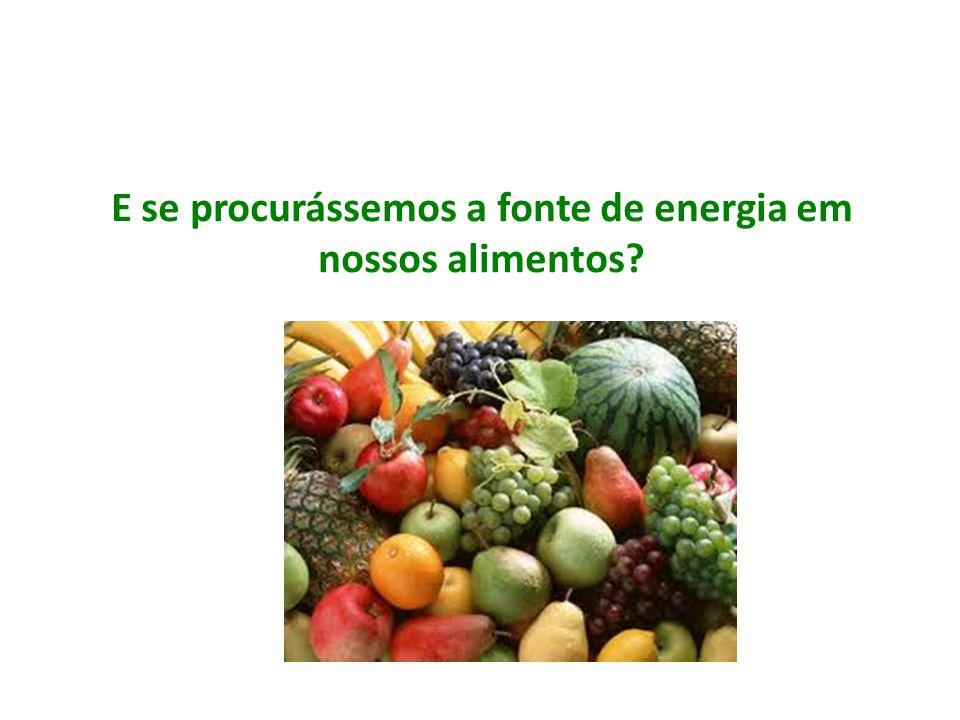E se procurássemos a fonte de energia em nossos alimentos?