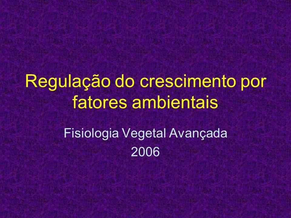 Regulação do crescimento por fatores ambientais Fisiologia Vegetal Avançada 2006