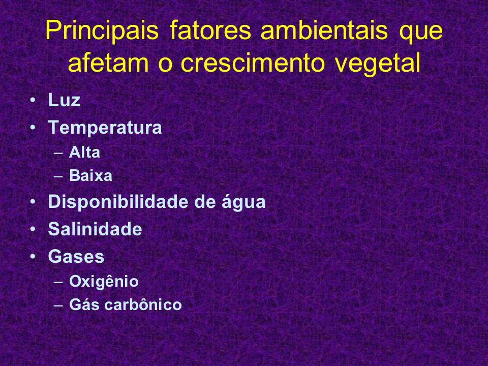 Principais fatores ambientais que afetam o crescimento vegetal Luz Temperatura –Alta –Baixa Disponibilidade de água Salinidade Gases –Oxigênio –Gás ca