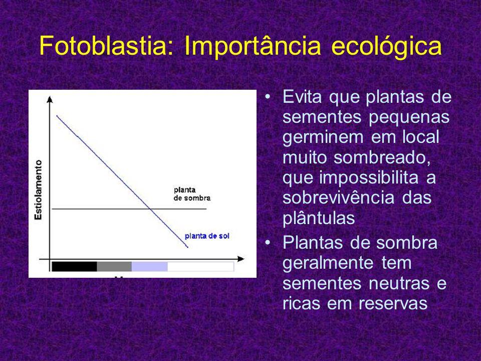Fotoblastia: Importância ecológica Evita que plantas de sementes pequenas germinem em local muito sombreado, que impossibilita a sobrevivência das plâ