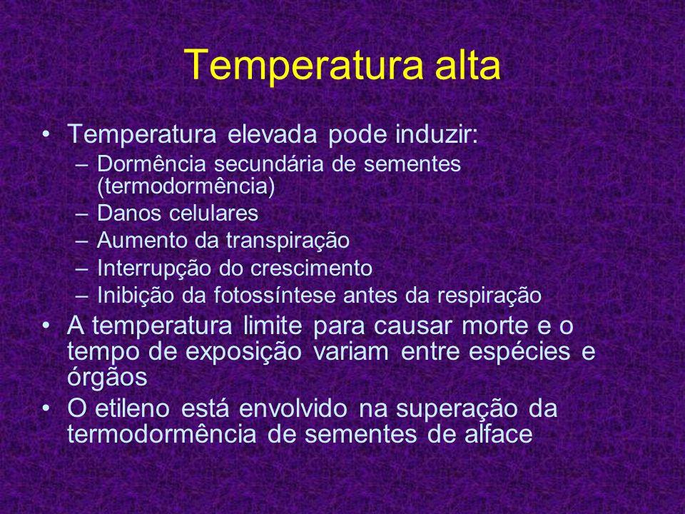 Temperatura alta Temperatura elevada pode induzir: –Dormência secundária de sementes (termodormência) –Danos celulares –Aumento da transpiração –Inter
