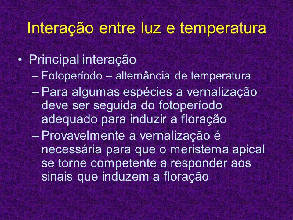Interação entre luz e temperatura Principal interação –Fotoperíodo – alternância de temperatura –Para algumas espécies a vernalização deve ser seguida
