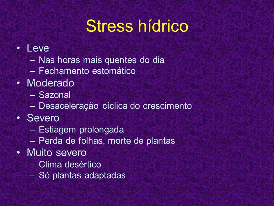 Stress hídrico Leve –Nas horas mais quentes do dia –Fechamento estomático Moderado –Sazonal –Desaceleração cíclica do crescimento Severo –Estiagem pro
