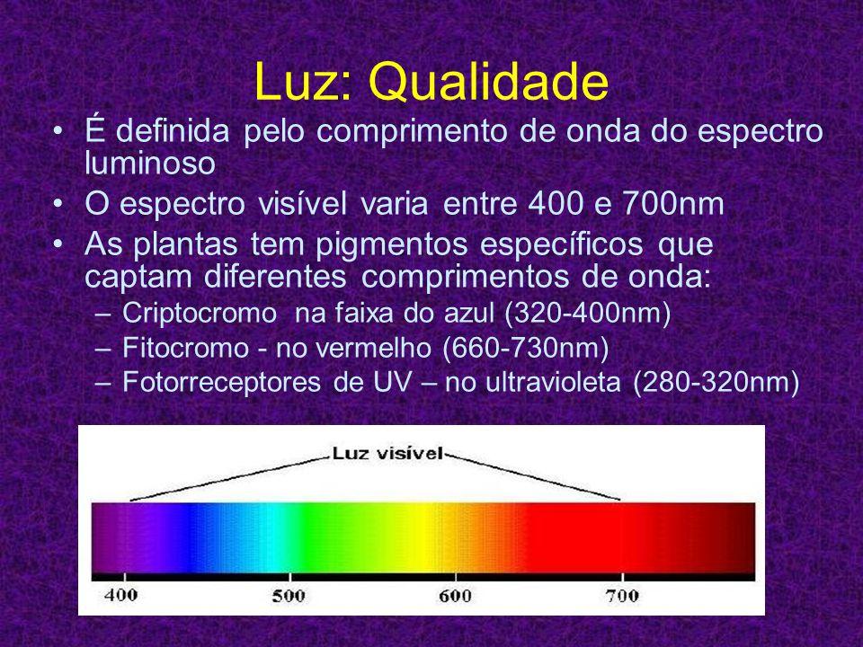 Luz: Qualidade É definida pelo comprimento de onda do espectro luminoso O espectro visível varia entre 400 e 700nm As plantas tem pigmentos específico