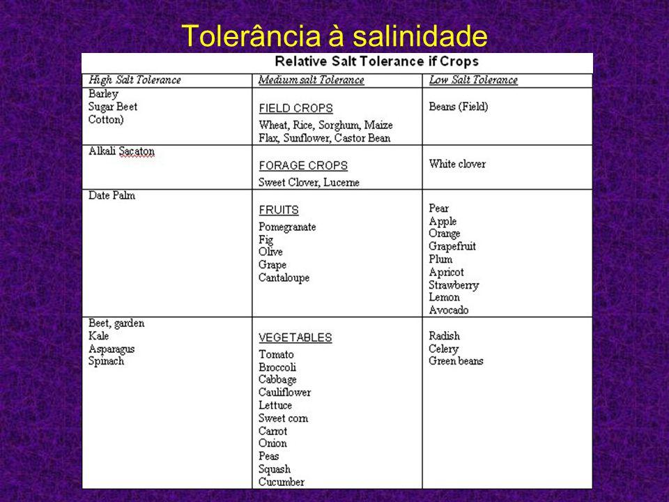 Tolerância à salinidade