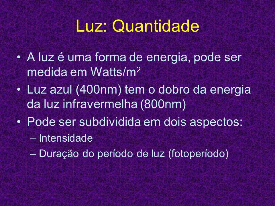 Luz: Quantidade A luz é uma forma de energia, pode ser medida em Watts/m 2 Luz azul (400nm) tem o dobro da energia da luz infravermelha (800nm) Pode s