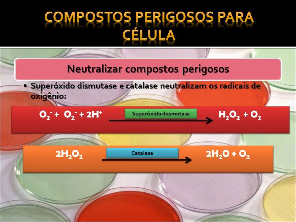 Neutralizar compostos perigosos Superóxido dismutase e catalase neutralizam os radicais de oxigênio:Superóxido dismutase e catalase neutralizam os rad