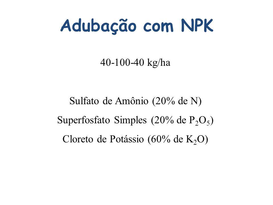 Adubação com NPK 40-100-40 kg/ha Sulfato de Amônio (20% de N) Superfosfato Simples (20% de P 2 O 5 ) Cloreto de Potássio (60% de K 2 O)