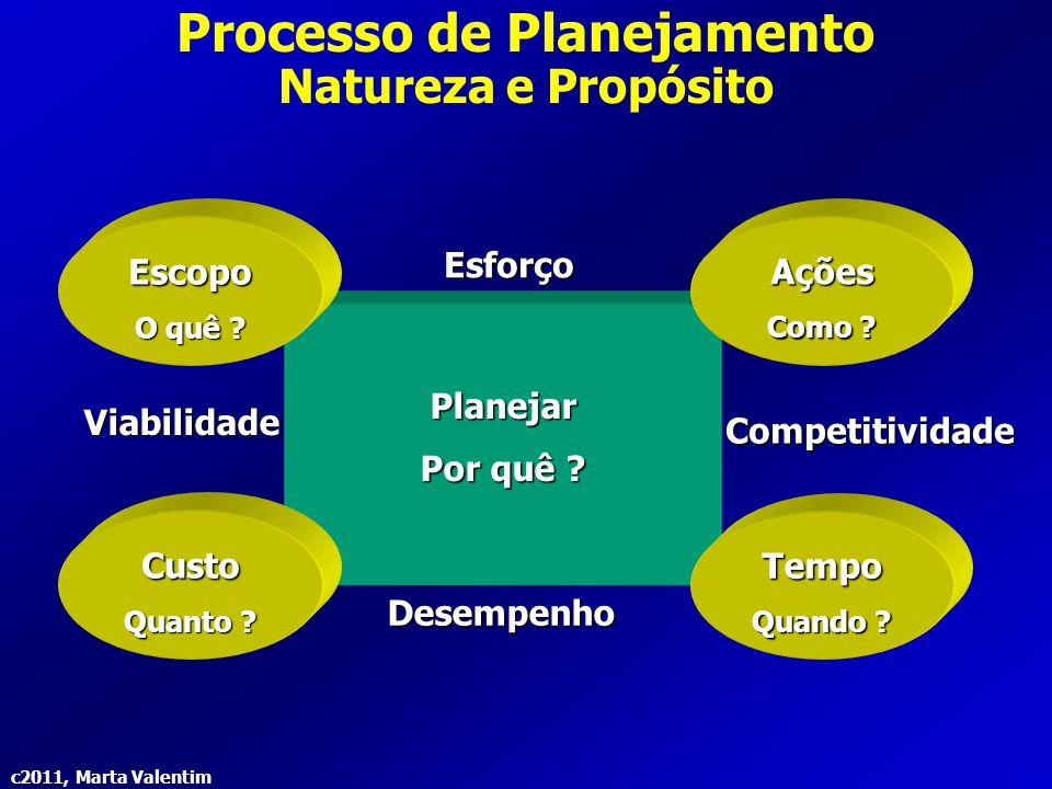 c2011, Marta Valentim Processo de Planejamento Barreiras ao Planejamento a)Incapacidade de prever efetivamente:  Prever tudo com exatidão total é muito difícil.
