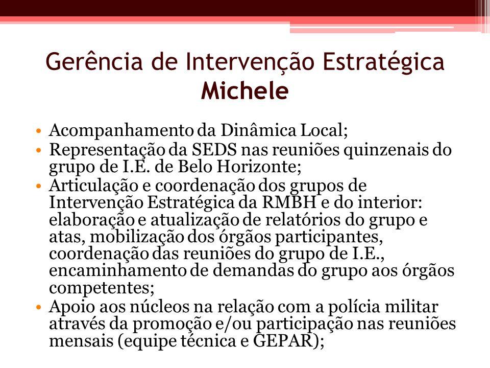 Gerência de Intervenção Estratégica Michele Acompanhamento da Dinâmica Local; Representação da SEDS nas reuniões quinzenais do grupo de I.E. de Belo H