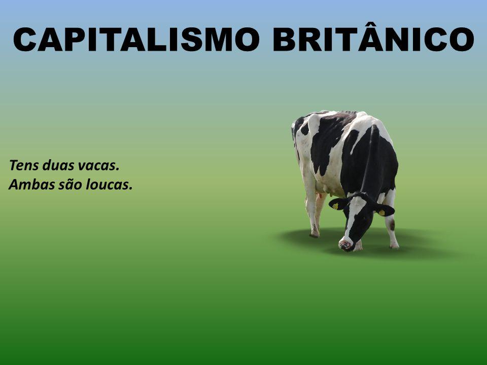 CAPITALISMO JAPONÊS Tens duas vacas. Fazes uma modificação genética para que tenham um décimo do tamanho duma vaca normal e produzam 20 vezes mais lei