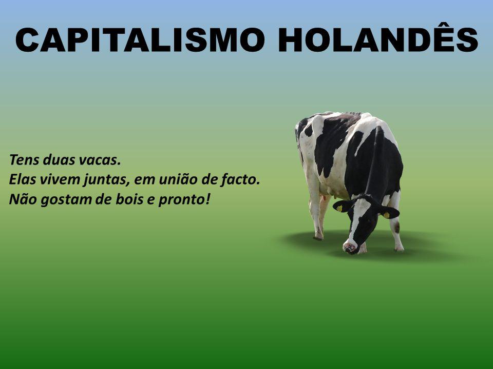 CAPITALISMO HOLANDÊS Tens duas vacas.Elas vivem juntas, em união de facto.