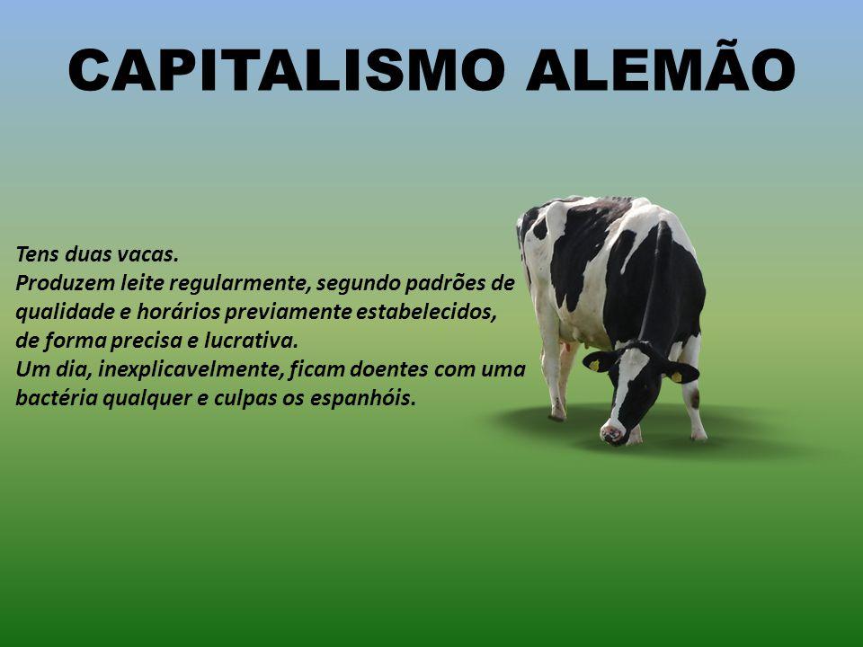CAPITALISMO HOLANDÊS Tens duas vacas. Elas vivem juntas, em união de facto. Não gostam de bois e pronto!