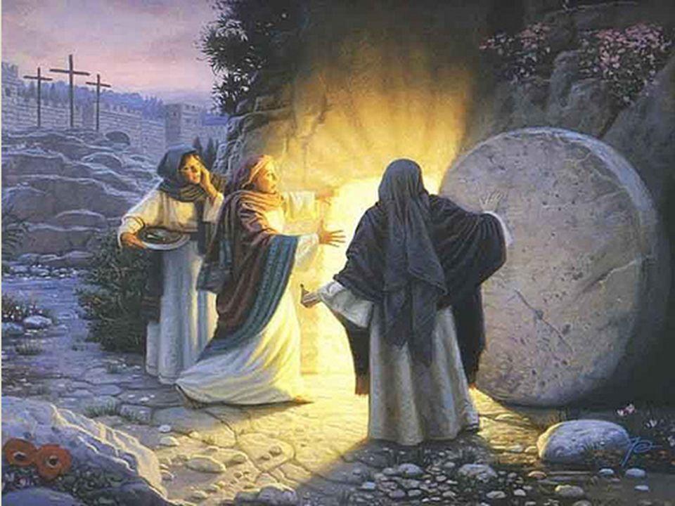  A orientação de Jesus:   a respeito daquele dia e hora ninguém sabe, nem os anjos dos céus, nem o Filho, senão o Pai. (Mateus 24.36)  Não cabe a vocês saber a ocasião ou o dia que o Pai marcou com a sua própria autoridade. (Atos 1.7)