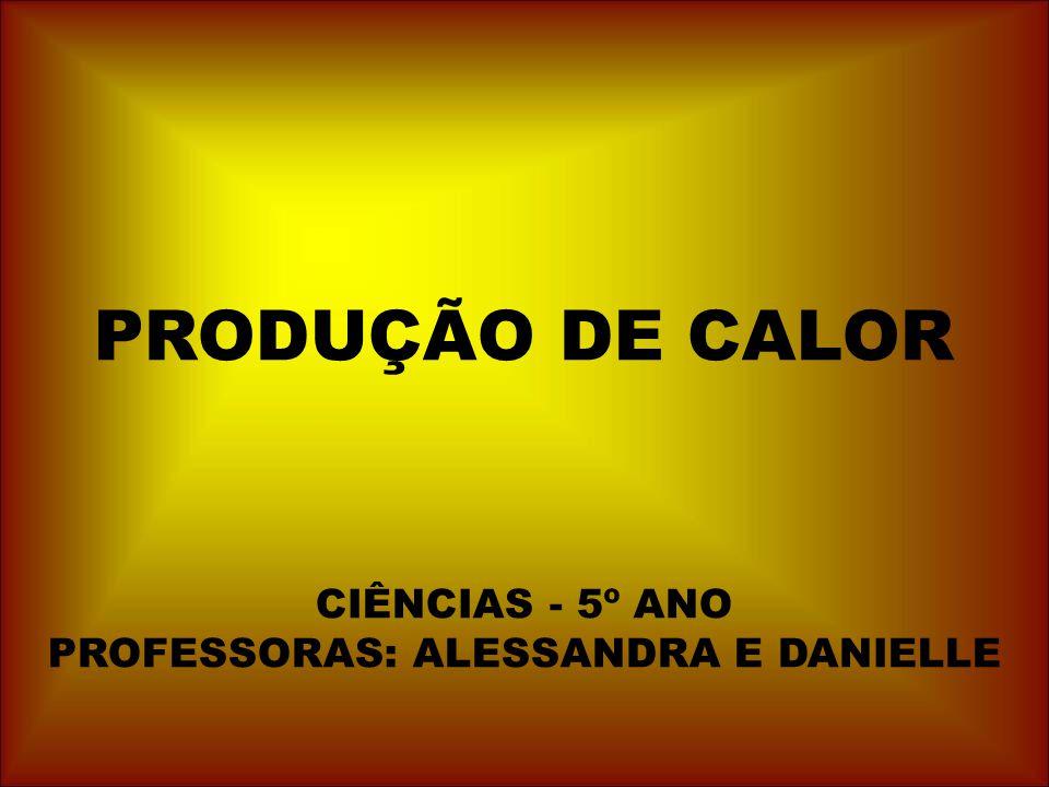 PRODUÇÃO DE CALOR CIÊNCIAS - 5º ANO PROFESSORAS: ALESSANDRA E DANIELLE