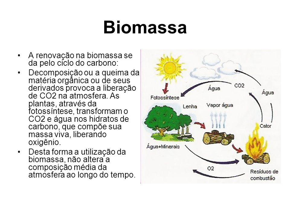 Biomassa A renovação na biomassa se da pelo ciclo do carbono: Decomposição ou a queima da matéria orgânica ou de seus derivados provoca a liberação de