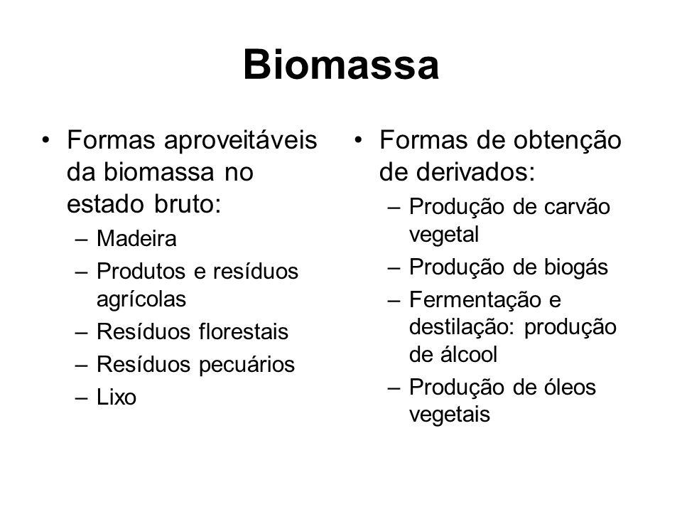 Biomassa Formas aproveitáveis da biomassa no estado bruto: –Madeira –Produtos e resíduos agrícolas –Resíduos florestais –Resíduos pecuários –Lixo Formas de obtenção de derivados: –Produção de carvão vegetal –Produção de biogás –Fermentação e destilação: produção de álcool –Produção de óleos vegetais
